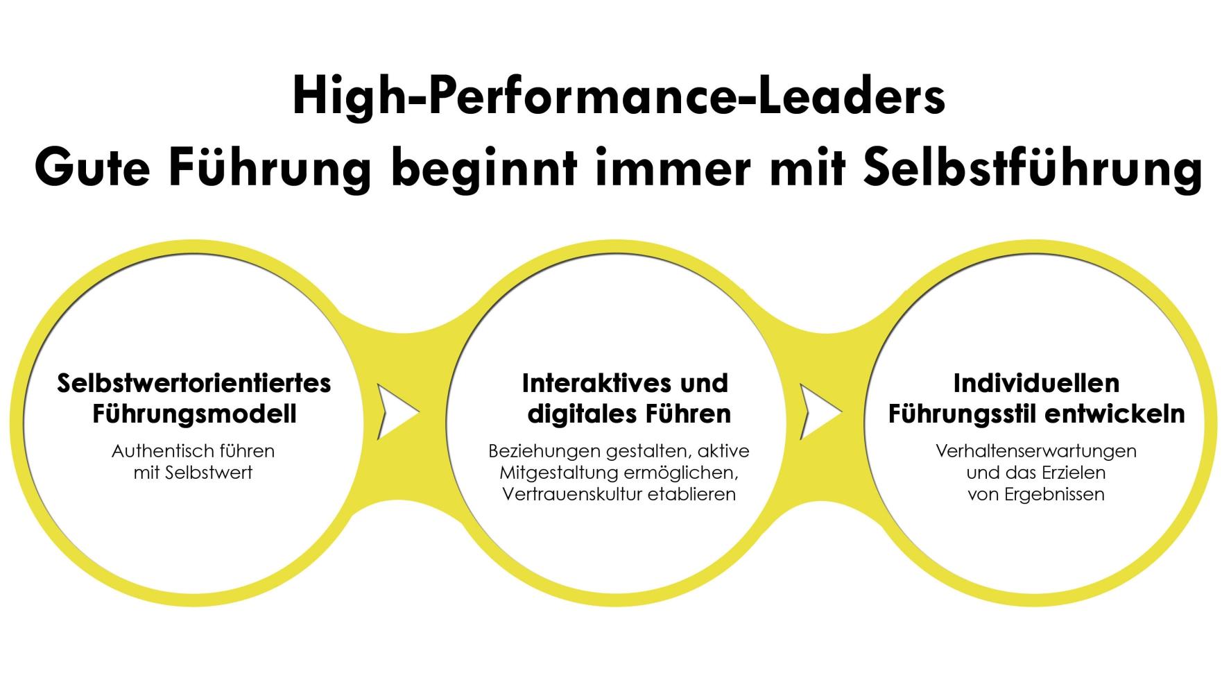selbstorientierte-fuehrung-infografik